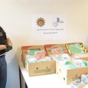 Đức: Phát hiện nửa tấn Kokain có giá thị trường chợ đen 25 triệu Euro được giấu trong những thùng chuối