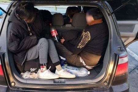 Cảnh sát Đức bắt 3 xe đưa lậu 17 người Việt Nam vào nước Đức