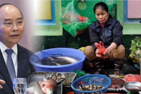 Nhờ 'ở bẩn' hay nhờ 'trời thương' mà người Việt thoát viêm phổi Vũ Hán