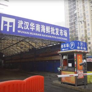 Tình báo Mỹ: Trung Quốc che giấu độ bùng phát virus để tích trữ thiết bị