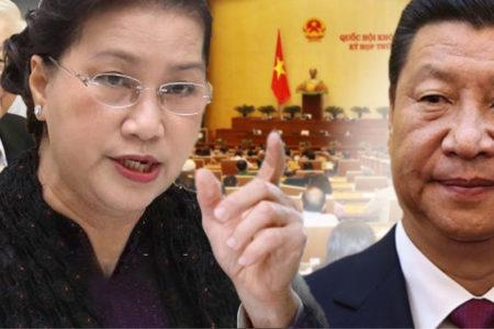 Lo Trung Quốc thâu tóm – Việt Nam chuẩn bị ra luật