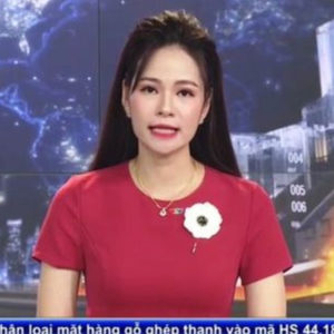 Vietnam Prime Minister and National TV miss to apology for their mistakes, people should be cautious