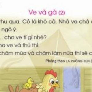 Vietnamese first-class textbook Canh Dieu: Bad but not bad enough for being revoked