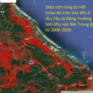 Why natural disasters in Vietnam's central region becomes more and more serious?