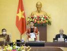 Nguyễn Thị Kim Ngân, hành trình từ thành công tột đỉnh đến thất bại ê chề