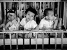 Dow: Agent Orange dispute should be resolved between governments of Vietnam and US