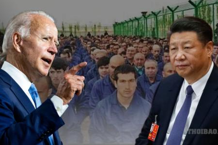 Thượng viện Hoa Kỳ thông qua dự luật cấm tất cả các sản phẩm từ Tân Cương