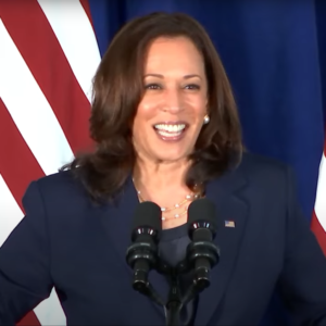 Vice President Harris's visit to Vietnam: Vietnam-US relations and the expectation gap between people and regime
