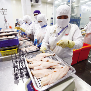 Vietnam: Supply chain disruption is not just a risk