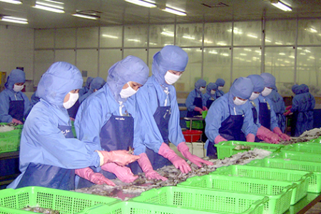 Nearly 8,000 companies in Mekong Delta dissolved due to COVID-19